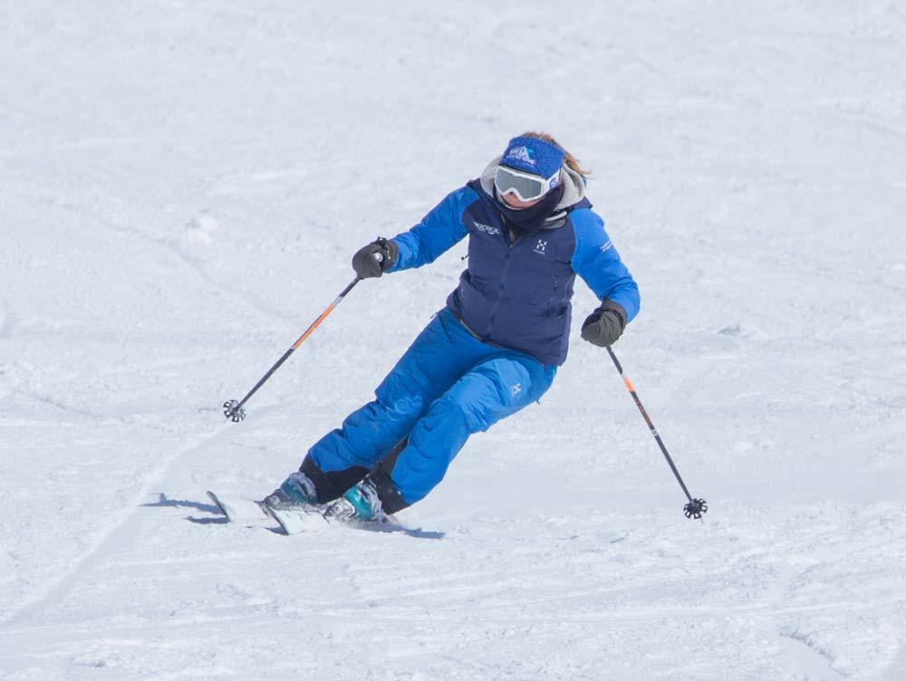 Ski posture - dynamic position